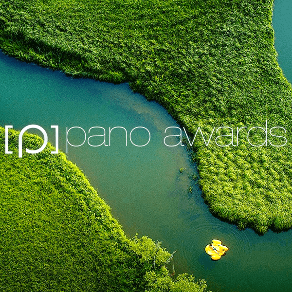 Epson International Pano Awards 2019