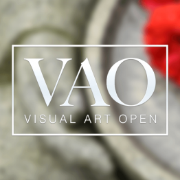 Visual Arts Open Prize 2021
