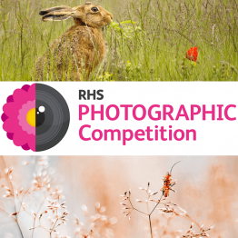 RHS Photographic Competition 2022 | Graphic Competitions